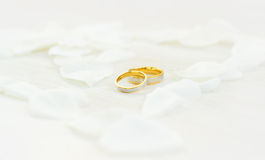 Wedding rings. In white petals Stock Photo