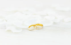 Wedding rings. And white petals Royalty Free Stock Photo