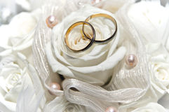Wedding rings on the white rose Stock Photos