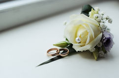 Wedding rings and  white rose. Wedding rings and beautiful white rose Royalty Free Stock Photography