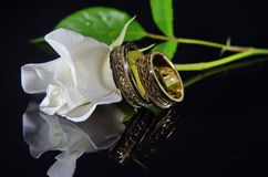 Wedding Rings and white rose Stock Image