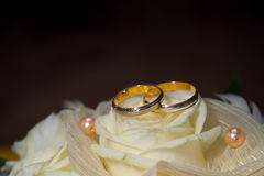 Wedding rings on the white roses Stock Photography