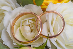 Wedding rings on a white roses Stock Image