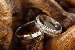 Wedding rings on wood. Two platinum wedding rings on wood background. Bride ring with diamonds. Shallow focus. Rustic concept Royalty Free Stock Photography
