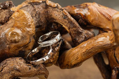 Wedding rings on wood. Two platinum wedding rings on wood background. Bride ring with diamonds. Shallow focus. Rustic concept Royalty Free Stock Photo