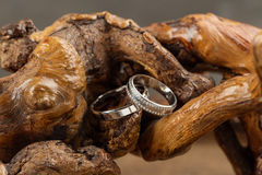 Wedding rings on wood. Two platinum wedding rings on wood background. Bride ring with diamonds. Shallow focus. Rustic concept Stock Photo