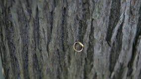 Wedding rings on wood. the wedding ring on wood background. Wedding Rings on wooden old background. old Wedding rings on stock footage