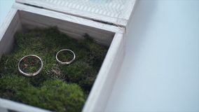 Wedding rings in a wooden box filled with moss on the green grass. Wedding. Wedding ring. Vintage engagement ring with a royalty free stock photos
