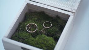Wedding rings in a wooden box filled with moss on the green grass. Wedding. Wedding ring. Vintage engagement ring with a stock photos