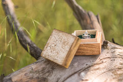 Wedding rings. In a wooden box on the tree Stock Images