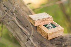 Wedding rings. In a wooden box on the tree Royalty Free Stock Photos