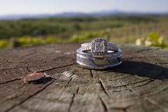 Wedding rings on a wooden log in a vineyard. In the mountains Stock Photo