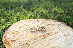 Wedding rings on a wooden saw cut Royalty Free Stock Images