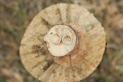 Wedding rings on a wooden saw cut Stock Images