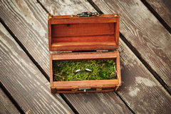 Wedding rings in wooden vintage box on moss Stock Photos