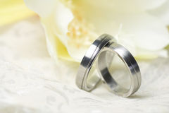 Wedding rings and yellow flower. Wedding rings of platinum and yellow flower Royalty Free Stock Image