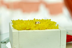 Wedding rings in yellow flowers. In wood box Royalty Free Stock Image