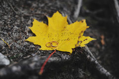 Wedding rings on a yellow maple leaf. With a wedding memorial Royalty Free Stock Images