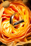 Wedding rings on the yellow roses. Stock Image