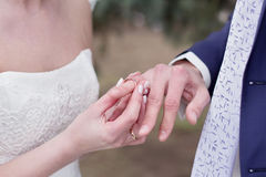 Wedding. RnNewlyweds exchange rings on their wedding day stock photography