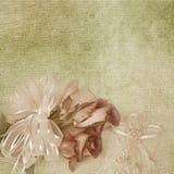 Wedding Rose royalty free illustration