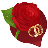 Wedding rose Royalty Free Stock Photo