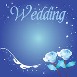 Wedding Rose Background. Beautiful background designed with rose in blue color Royalty Free Stock Photo