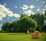 Wedding rose bouquet on a basket. Bouquet of newly-married couple on a basket in nature Stock Images