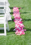 Wedding rose petals on ground. Wedding rose petals on grass ground near white chairs of outdoor ceremony setting royalty free stock images