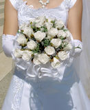 Wedding roses Royalty Free Stock Photos