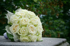 Wedding roses on stone. In garden Stock Image