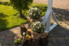 Wedding rustic decor. Apples, wooden stumps, chrysanthemums in the pot. White flowers in pot are standing near the wooden white we. Dding arch Royalty Free Stock Images