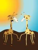 Wedding in safari Royalty Free Stock Photo