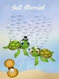 Wedding of sea turtles Royalty Free Stock Photo