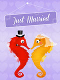 Wedding of seahorses Royalty Free Stock Photo