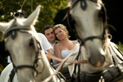 Wedding series, carriage. Outdoor shot Royalty Free Stock Images
