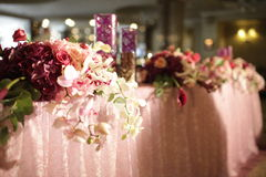 Wedding served decorated tables Stock Image