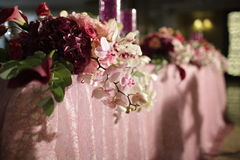 Wedding served decorated tables Stock Images