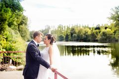 Wedding session in the park Royalty Free Stock Photos