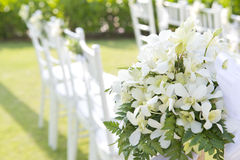 Wedding set up in garden inside beach Stock Images