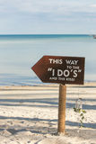 Wedding setting. On the beach Stock Photography