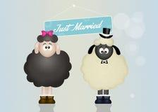 Wedding of sheeps. Cute illustration of Wedding sheeps Stock Image