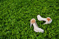 Wedding shoes. On the tree Stock Images