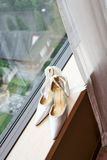 Wedding shoes. Beside the window Royalty Free Stock Photo