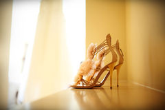 Free Wedding Shoes Stock Photography - 29221282