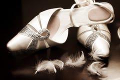 Free Wedding Shoes Royalty Free Stock Photo - 8909555