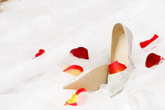 Wedding Shoes And Rose Petails Stock Image