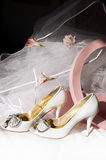 Wedding shoes, box and veil Royalty Free Stock Photo