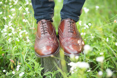 The Wedding shoes. Brown mens wedding shoes in the grass Stock Photo