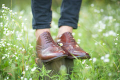 The Wedding shoes. Brown mens wedding shoes in the grass Royalty Free Stock Photography